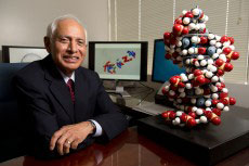 Vasu Nair, Georgia Research Alliance Eminent Scholar and director of the UGA Center for Drug Discovery, has developed a drug that blocks HIV from inserting its genome into the DNA of the host cell.