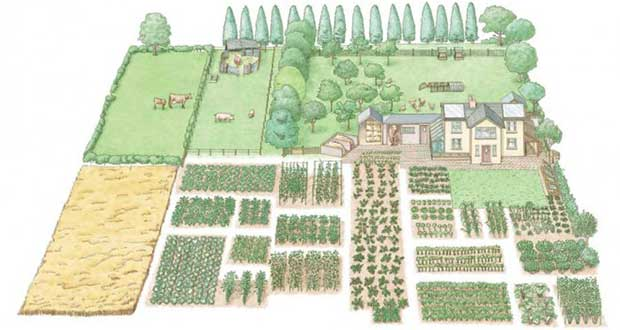 How-To-Start-A-1-Acre,-Self-Sustaining-Homestead
