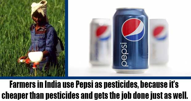 Coke-and-Pepsi-Are-Used-as-Pesticides-in-India