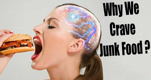 Junk-food-and-your-Brain