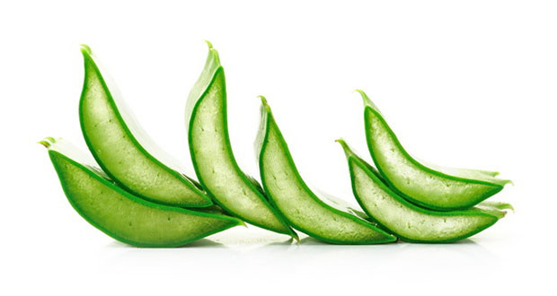4-amazing-uses-for-aloe-vera