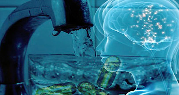 Fluoride-and-the-Pineal-Gland