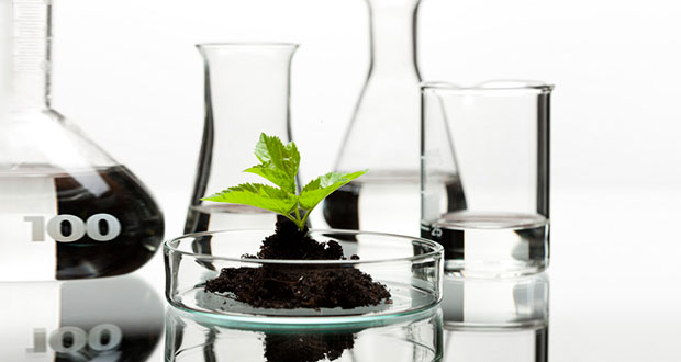 Why-Cannabis-Is-the-Future-of-Medicine-2