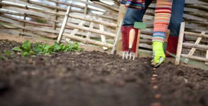 Growing Your Own Food is a Must for Our Future