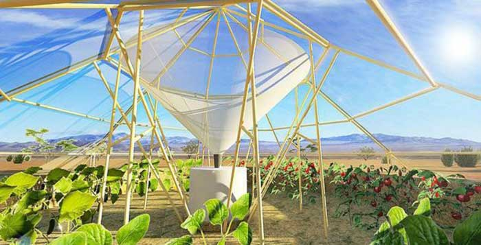 With-This-Greenhouse-It-Is-Now-Possible-To-Grow-Crops-In-The-Desert-1