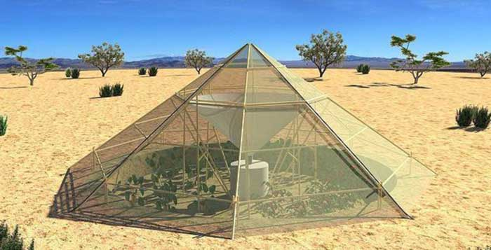 With-This-Greenhouse-It-Is-Now-Possible-To-Grow-Crops-In-The-Desert