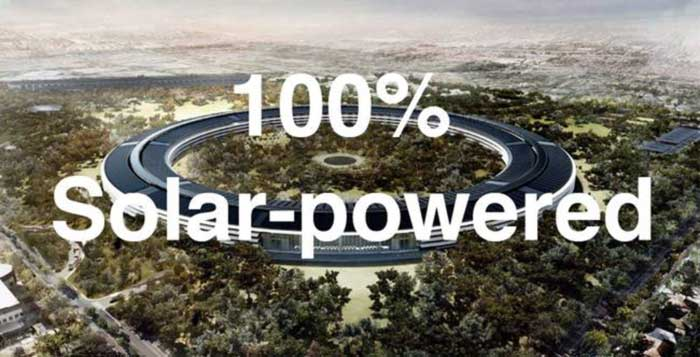 Apple-buys-a-forest-the-size-of-San-Francisco-for-conservation-5