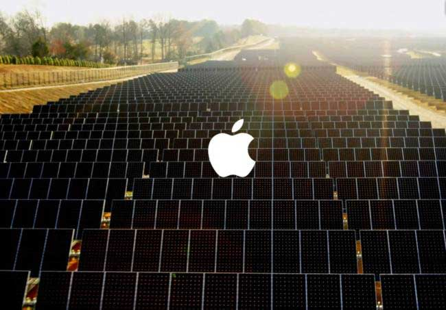 Apple-buys-a-forest-the-size-of-San-Francisco-for-conservation