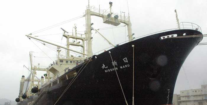 Japanese-Whaling-Ships-Return-Home-Empty-the-First-Time-Since-They-Killed-Whales-For-Science