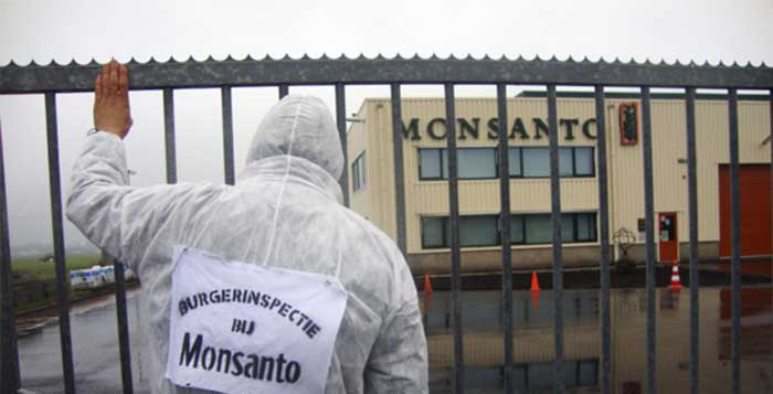 Lawsuit-Accuses-Monsanto-of-Lying-About-Safety-of-Roundup