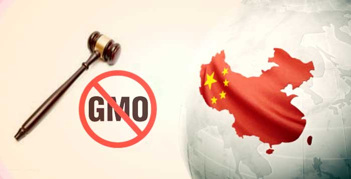 CHINESE GOVERNMENT SUED FOR GENETICALLY MODIFIED FOOD