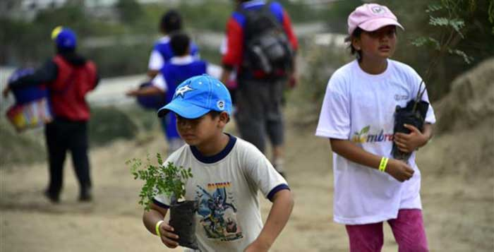 Ecuador-Just-Set-The-World-Record-For-Reforestation-1