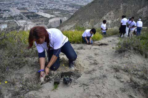 Ecuador-Just-Set-The-World-Record-For-Reforestation-2