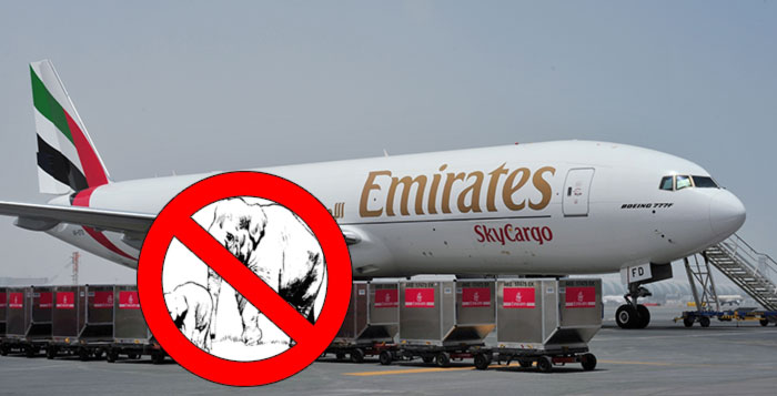 Multiple Airlines Will Now Refuse To Ship Hunting Trophies