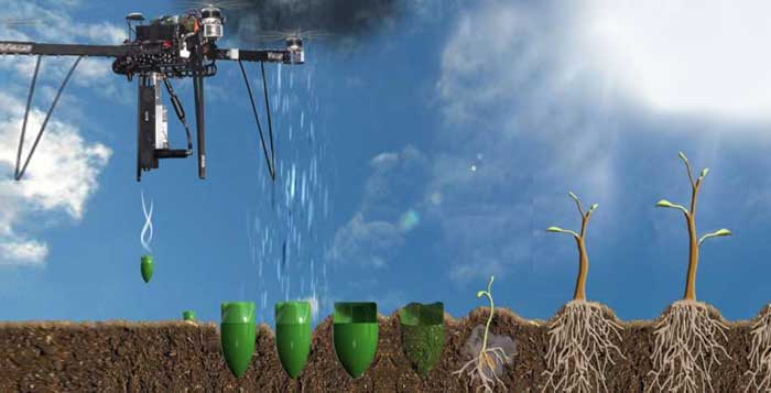 New Company Plans To Reverse Deforestation By Planting 1 Billion Trees With Drones