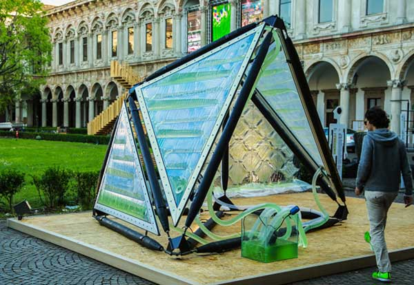 New-Urban-Algae-Invention-Produces-As-Much-Oxygen-As-A-Small-Forest-32