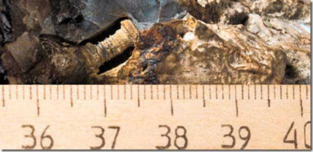 Researchers-in-China-discover-a-300-million-year-old-screw-embedded-into-rock
