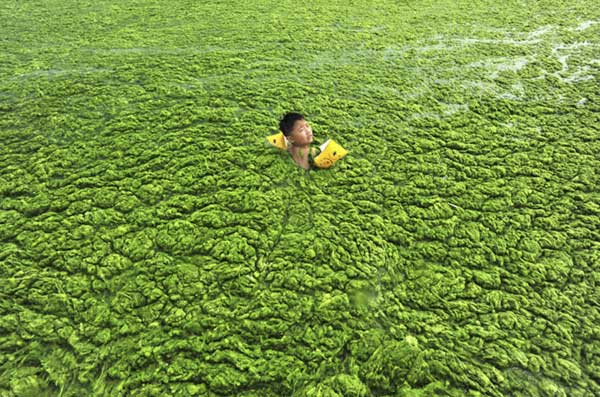 Soul-Crushing-Photos-Of-Pollution-That-Should-Inspire-You-To-Recycle-54