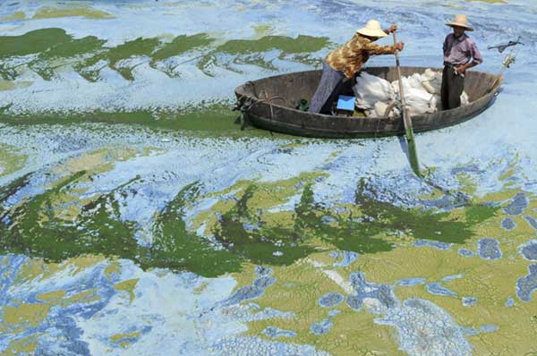 Soul-Crushing-Photos-Of-Pollution-That-Should-Inspire-You-To-Recycle-62