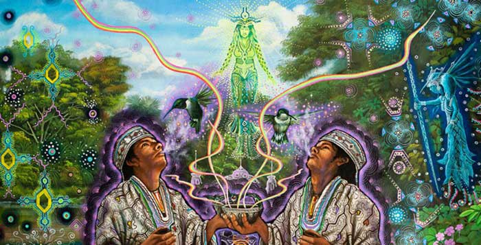 7-Legal-Herbs-That-Can-Alter-Your-Consciousness-and-Super-Charge-your-Dreamso