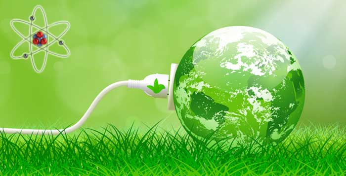 Living-Plants-Generate-Electricity-In-Netherlands