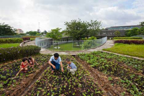 New-School-In-Vietnam-Has-Massive-Garden-On-Its-Roof-And-Teaches-Sustainability