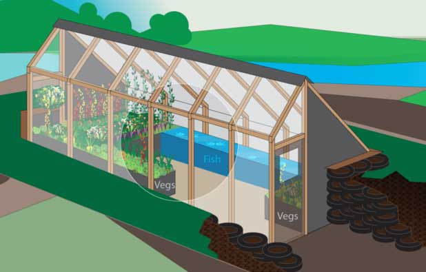 The-Greenhouse-of-the-Future