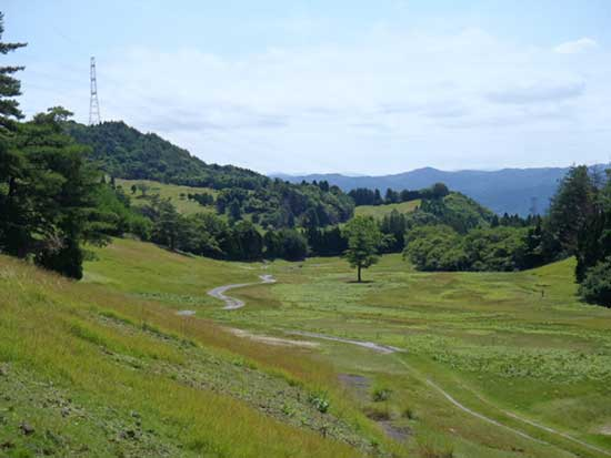 Japan-Abandoned-Golf-Courses-Are-Being-Transformed-Into-Solar-Power-Farms