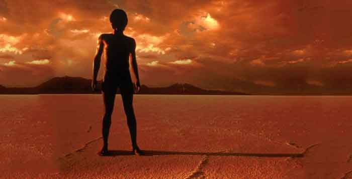 Recent Findings Suggest That There Was Life On Mars