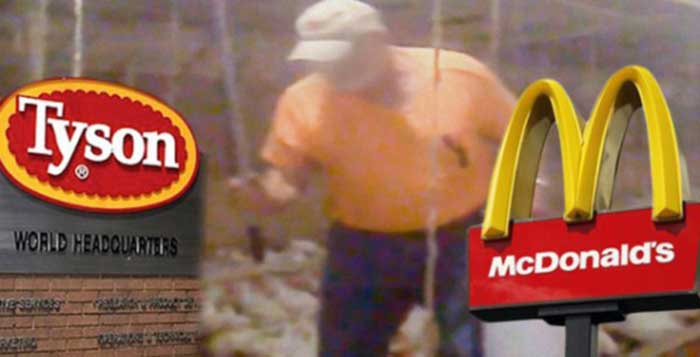 McDonalds Under Fire after Hidden Footage Reveals the Truth Behind McNuggets