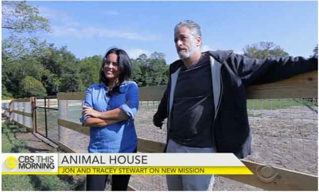 Jon-Stewart-Quits-Comedy-Starts-Animal-Sanctuary-to-Rescue-Abused-Factory-Farm-Animals-1