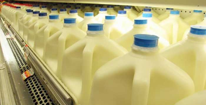 Harvard Scientist Urges People to Stop Drinking Low-Fat and Sweetened Milk Immediately