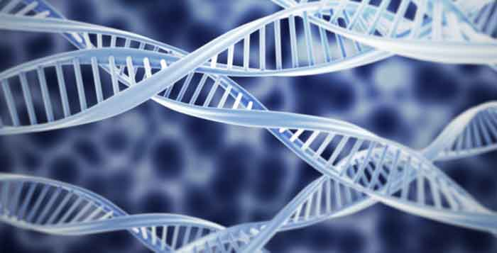 The Next Trillion-Dollar Industry Will Be Built on Genetic Code a