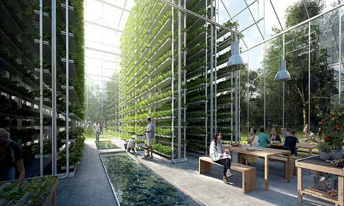Self-Reliant Town in the Netherlands Will Live Off-Grid Producing All of Its Own Energy and Food 2