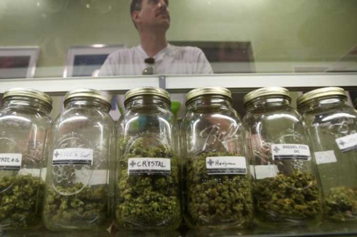 Marijuana Use Seen as the Lead Cause for 25 Decrease in Death Rate from Painkillers Overdose
