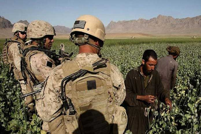 Afghan Opium Production 40 Times