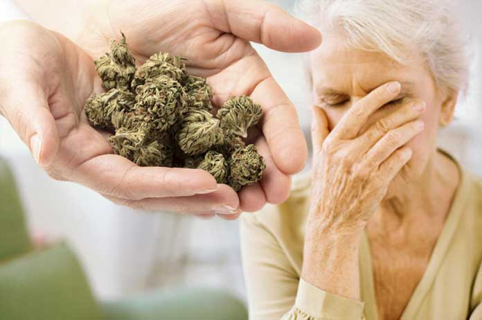 Study Reveals Cannabis May Offer a Breakthrough Treatment for Alzheimer