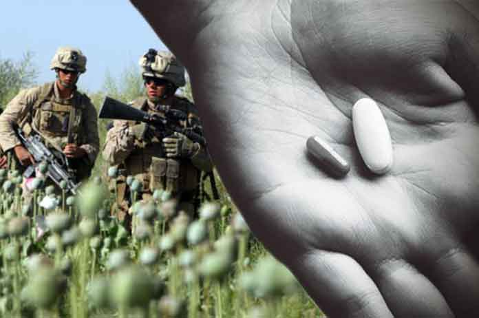Opiates Killed Ten Times as Many Americans as ALL Terror Attacks in Last 20 Years