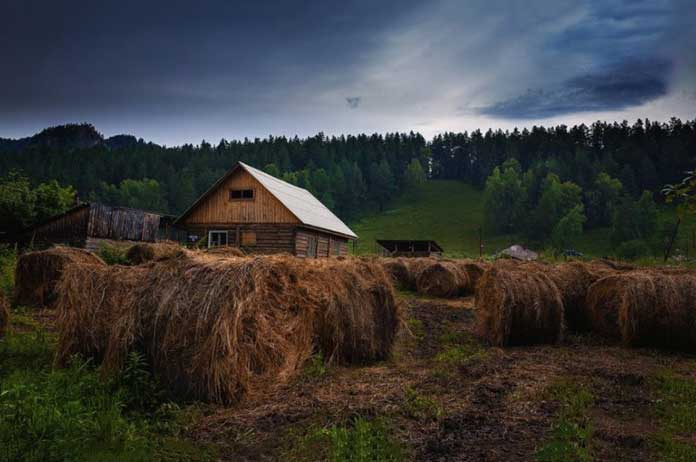 Russia Is Giving FREE farm-land Away To Any Citizen Willing To Work It