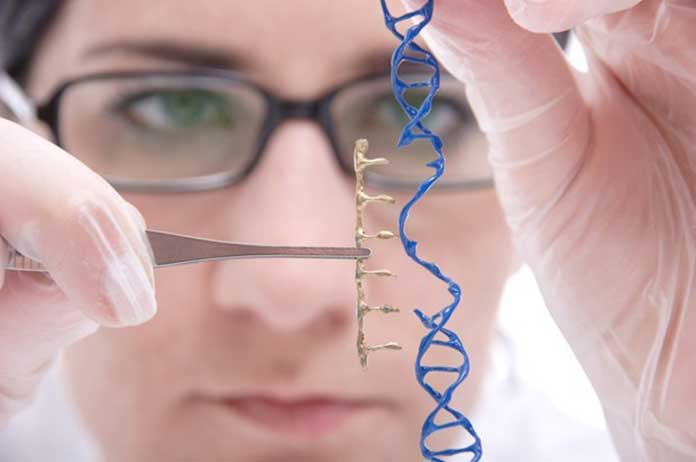 Scientists Just Backed Permanent Gene Editing in Humans