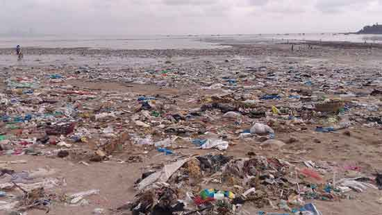 World Largest Beach Cleanup Removes 5.3 MILLION Kg Of Trash And Now It Looks Transformed 4