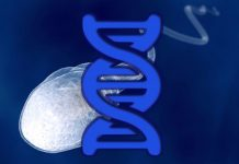 New GM Crops Use RNA Interference Technology for Mass Sterilization