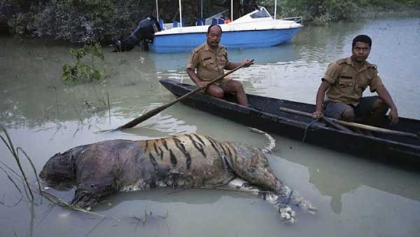 Disturbing Photos Of The Flooding In South Asia No One Is Talking About 11